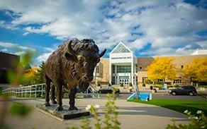 Bronze Buffalo statue in front of the Center for the Arts with fall foliage.