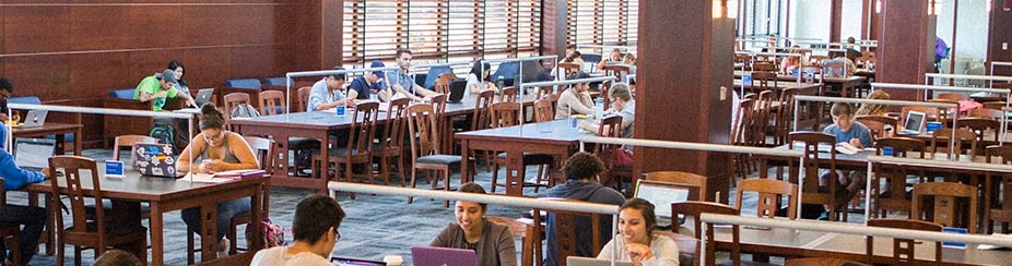 Students studying in newly renovated Silverman Library in Capen Hall.